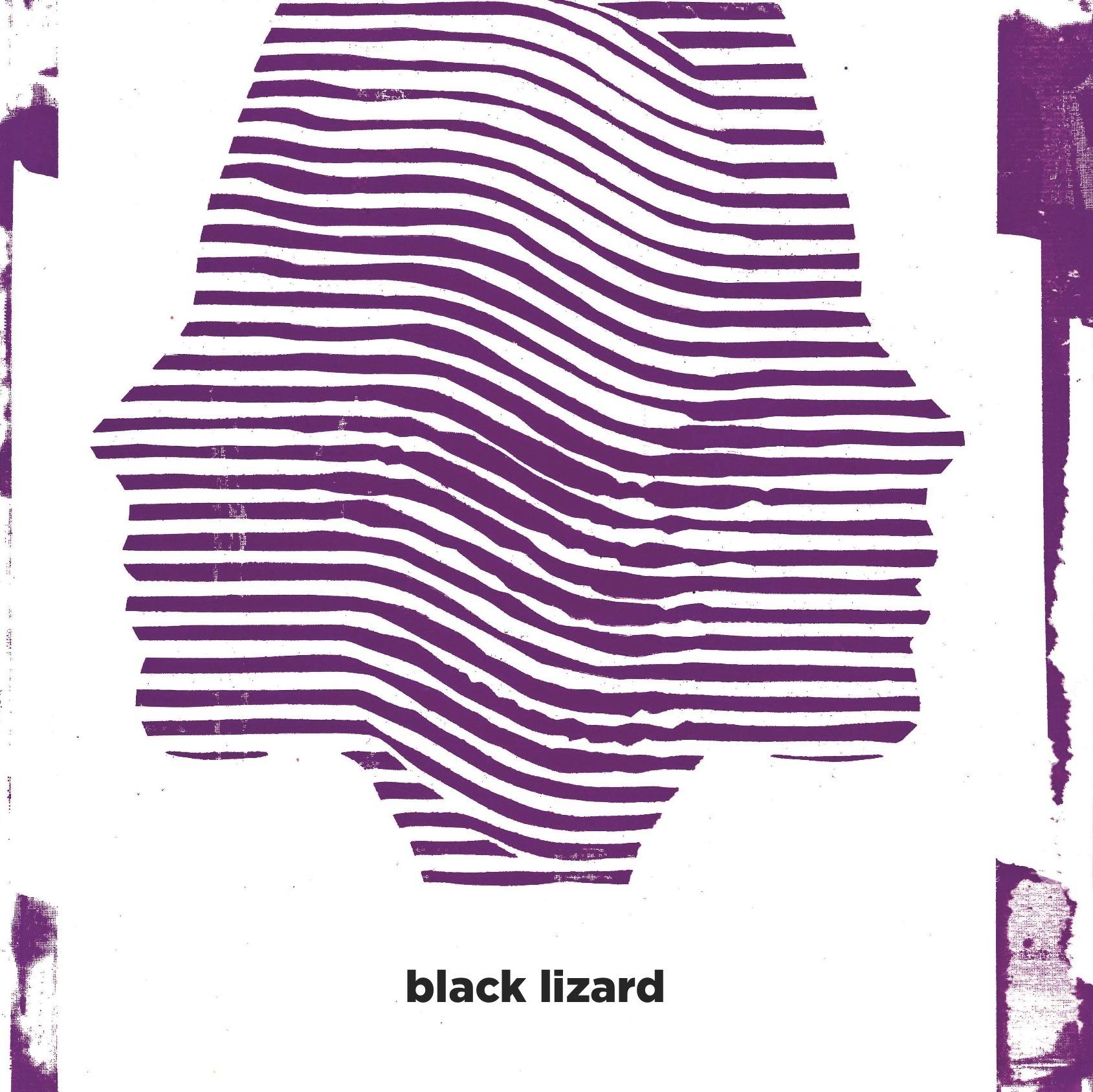 Resultado de imagem para black lizaRD black lizard soliti