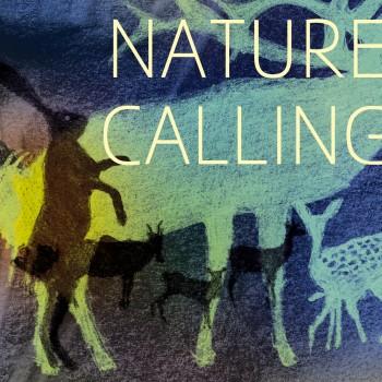 single_naturecalling_300res